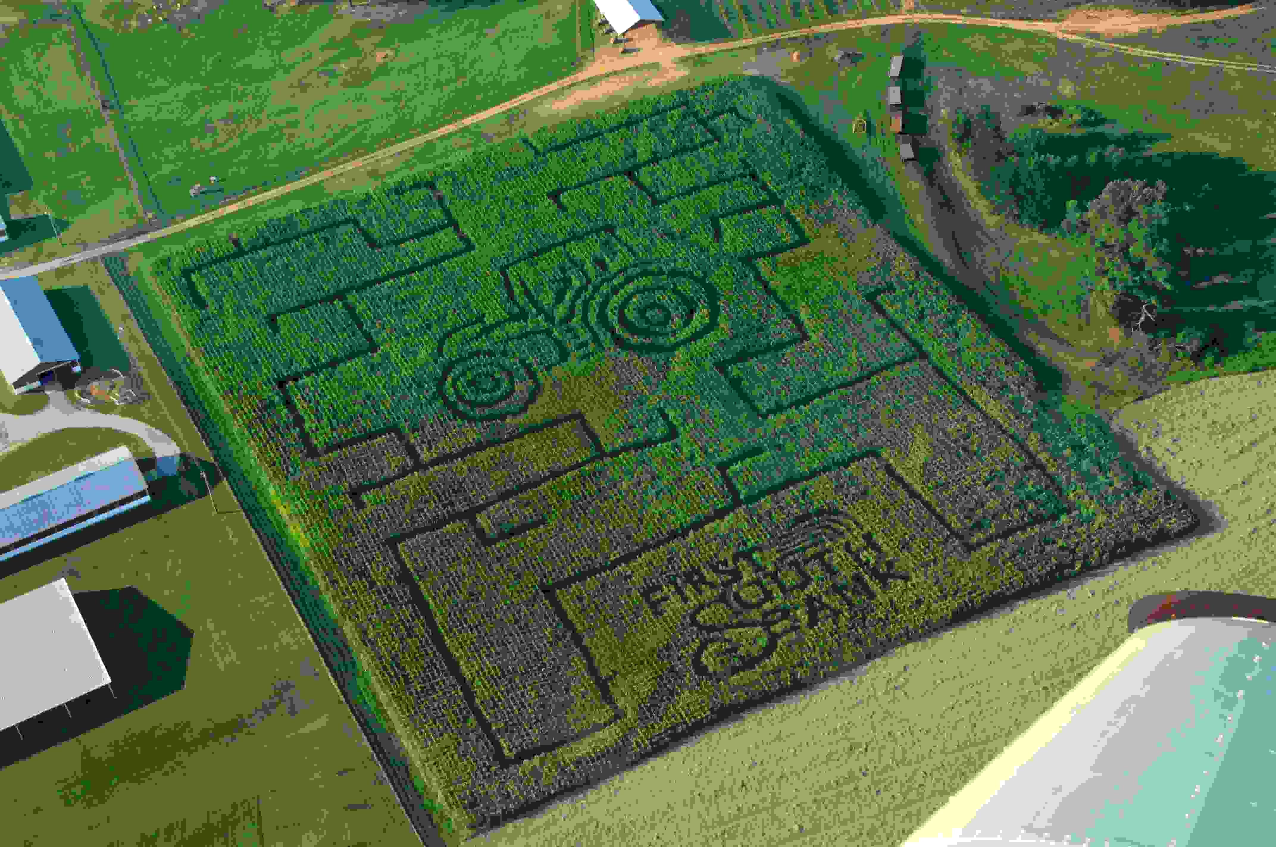 corn-maze-2012-2