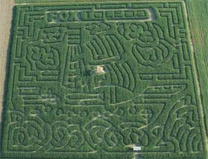 Corn Maze Design Kit